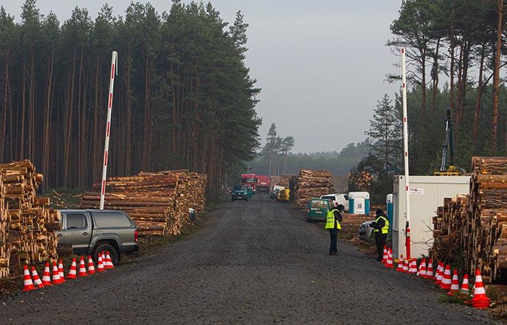 Massacre forestier de Tesla pour construire la gigafactory 4