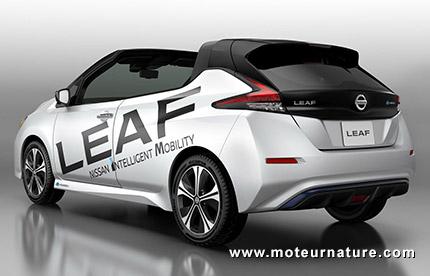 Nissan Leaf Targa
